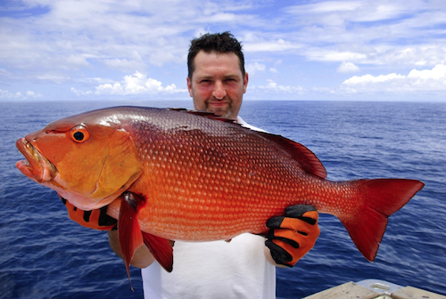 How to catch red snapper red snapper fishing tips for What is the best time to go fishing